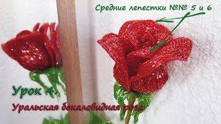 Бокаловидная роза. 🌹 Урок 4 - Средние лепестки 5 и 6 / Cup-shaped rose. Lesson 4 - Middle petals 5&6