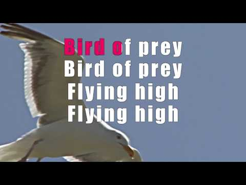 The Doors – Bird of pray Karaoke