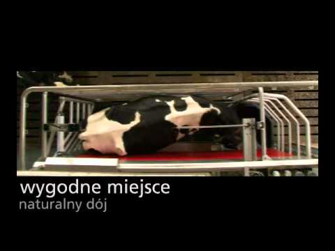 Lely Astronaut A4 - Product video (Polish)