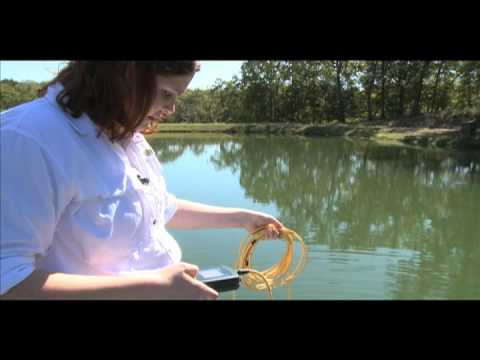 Pond Water Quality-Dissolved Oxygen