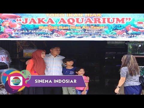 Sinema Indosiar - Berkah Sedekah Penjual Ikan Hias