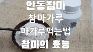 위장에 좋은 안동참마 참마의효능 참마가루먹는법