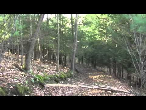 Henry10.55 Acre Land Parcel Video