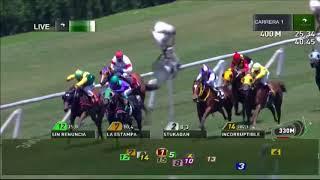 Vidéo de la course PMU QUE TIPO H.