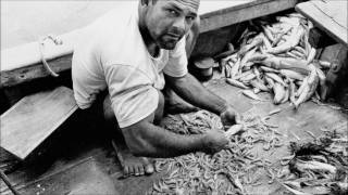 A Pesca: Commercial Fishing in Northeastern Brazil