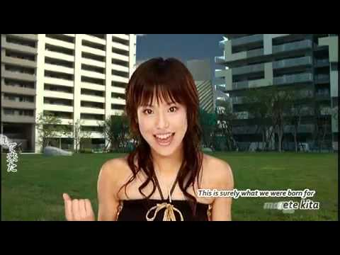 lagu ost the law of ueki falco