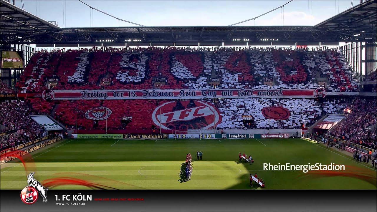 Fc Köln Mitgliedschaft Kündigen