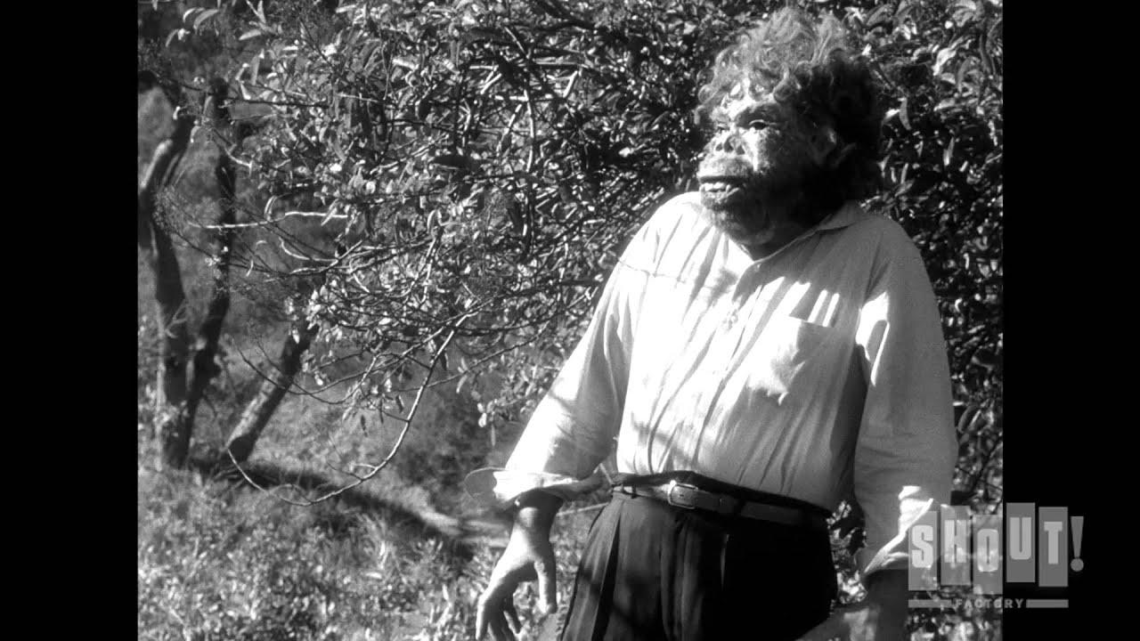 Neanderthal Man Crashes Picnic