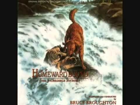 Homeward Bound The Incredible Journey Music