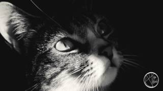 34 Shadows 34 Dope Trap Beat Instrumental 2017 Hard