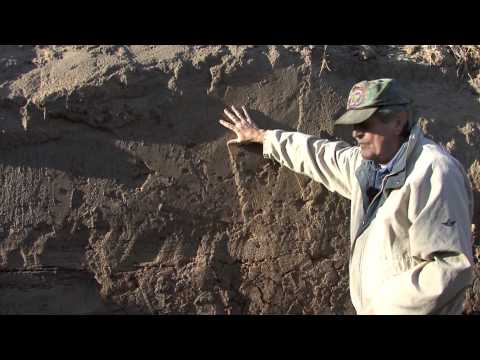 """Marion Haynes """"New Madrid 1811-1812"""" Earthquake features, historic evidence"""