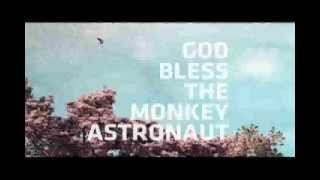 God Bless The Monkey Astronaut - Bald!