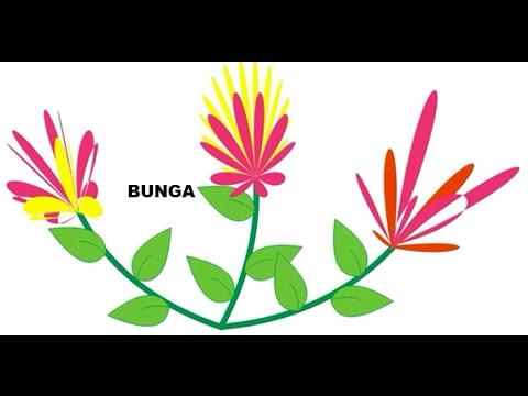 Tutorial Corel Draw 4 Cara Membuat gambar Bunga paling