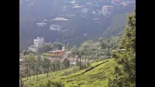 Agriculture & Residences in a hill-Ooty