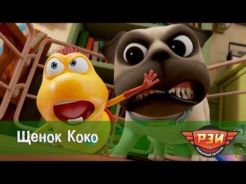 Рэй и пожарный патруль. 6-я Серия - Щенок Коко. Анимационный развивающий сериал для детей