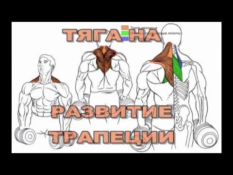Тренировки при сколиозе. Укрепление мускулатуры. Упражнения