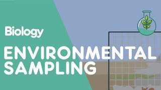 What Is Environmental Sampling? | Biology for All | FuseSchool