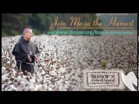 baa bishops annual appeal - 480×360