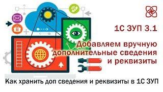 Дополнительные сведения и реквизиты в 1С ЗУП 3.1
