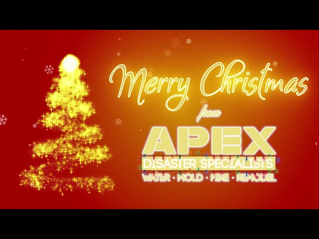 Merry Christmas Form APEX Disaster Specialists
