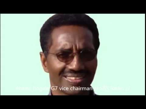 Interview with Abebe Bogale G7 vice chairman  20 Oct 2014 SBS radio