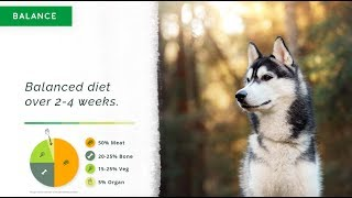 A Quick and Easy Raw and Cooked Natural Diet Course for Dogs (Part 3 of 3)