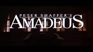 Amadeus pelicula torrent