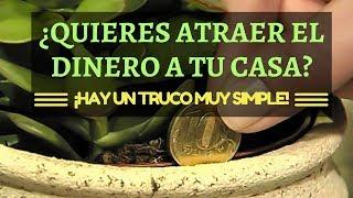 ¿QUIERES ATRAER EL DINERO A TU CASA? ¡HAY UN TRUCO MUY SIMPLE!