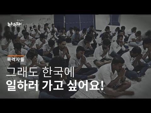 뉴스타파 목격자들 - 그래도 한국에 일하러 가고 싶어요!