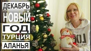Турция Новый Год не праздник Новогодние украшения и елки Декабрь в Аланье