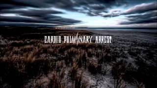 Genre:Melodic Death Metal Band:Cardio Pulmonary Arrest Country:Japa...