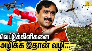 V Ponraj Interview On Locust Attack In India