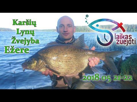 Molėtų r. Naktinė Karšių, Lynų Žvejyba Dugninėmis bonus Ungurys 2018 05 21-22 Full HD