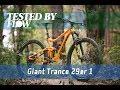 Tested: 2019 Giant Trance 29er 1