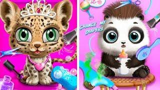 Прическа и наряды для кошечки и малышей в салоне красоты для животных