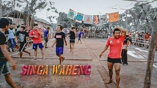 Gobak Sodor Olahraga Tradisional Singa Wareng Vs Jago Tellor