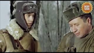 Лучшие моменты из фильмов с участием Леонида Быкова