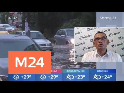 Дожди и грозы обрушатся на Москву в пятницу - Москва 24