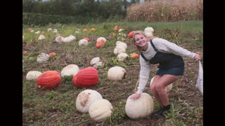 fall lookbook // transitional fall outfits