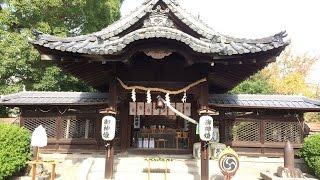 【きんぎょチャンネル】柳澤神社(大和郡山市城内町)