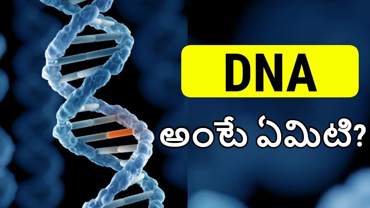 DNA in Telugu | What is DNA in Telugu | DNA Explained with ENGLISH SUBTITLES