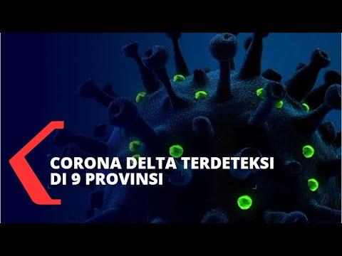 Download 160 Kasus Corona Delta Terdeteksi di 9 Provinsi Indonesia