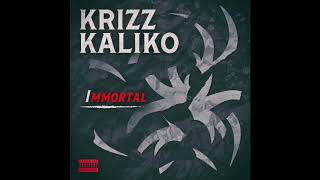 Watch Krizz Kaliko What Do You Mean feat King Iso video