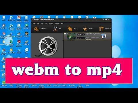 Chuyển đổi định dạng webm sang mp4 bằng phần mềm bigasoft  total convert