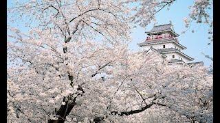 """島津亜矢「侍ニッポン(村田英雄)」をオカリナで吹いてみました。 I played """"Samurai Japan"""" of Japanese Blues by my ocarina."""