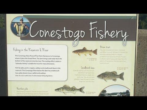 Underneath Conestogo Dam Fishing