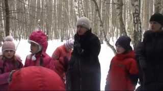 Лесные уроки в начальной школе. Исследование в группе
