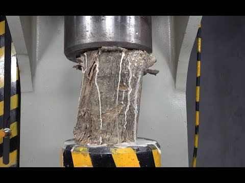 Large Piece Of Wood Challenges 100 Tons Of Hydraulic Press, Who Will Be Stronger