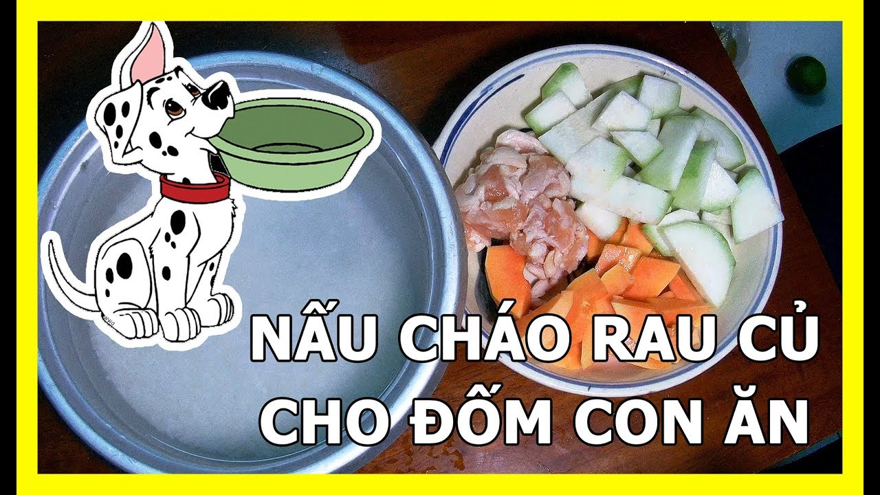 Cách nấu đồ ăn kèm rau củ cho chó đốm con ăn | Chó đốm con ăn gì | 0938 306 975 | Bán Chó Đốm Con
