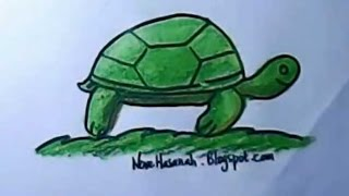 how to draw for kids   turtle